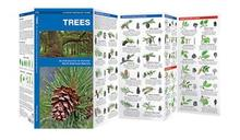 Wilcor Trees Pocket Guide