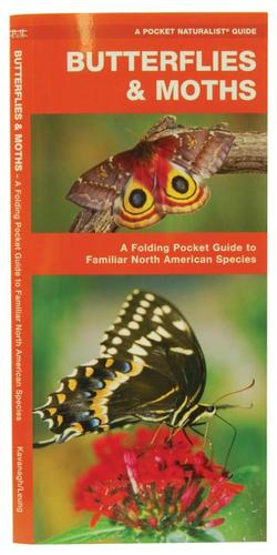 Wilcor Butterflies and Moths Guide