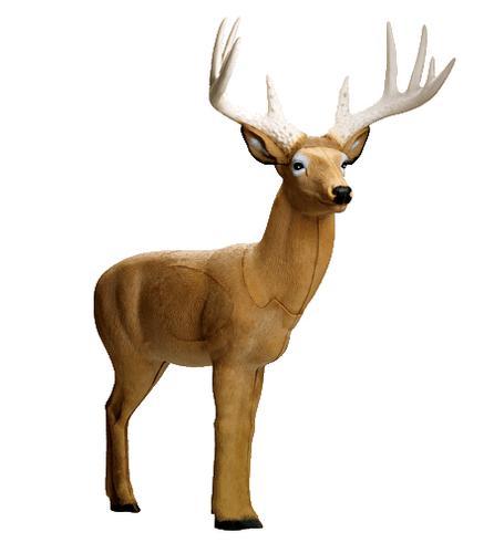 Rinehart Targets Booner Buck 3d Target