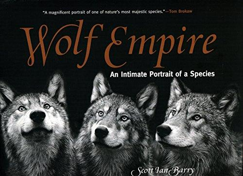 Wolf Empire: An Intimate Portrait of a Species Paperback Signed by Author