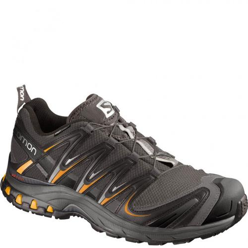 Salomon Men's XA PRO 3D CS WP Shoe Autobahn
