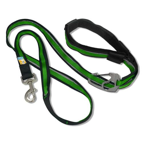 Kurgo Quantum Leash Reflect and Protect