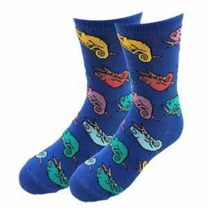 Sock Harbor Chameleon Youth Socks
