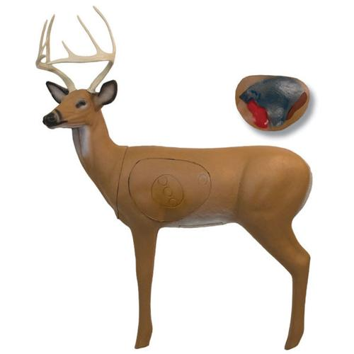 Big Shot Targets Pro Hunter Buck With Extra Broadhead Core