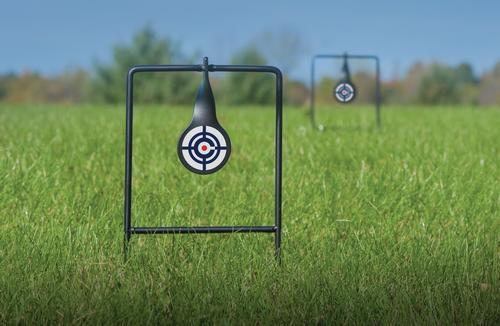 Crosman Dual Target Pack